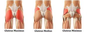 blog-glutes-pic-1